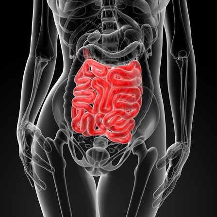 10 things that can cause leaky gut and wreck your health