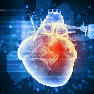 812 carbs not fats heart health